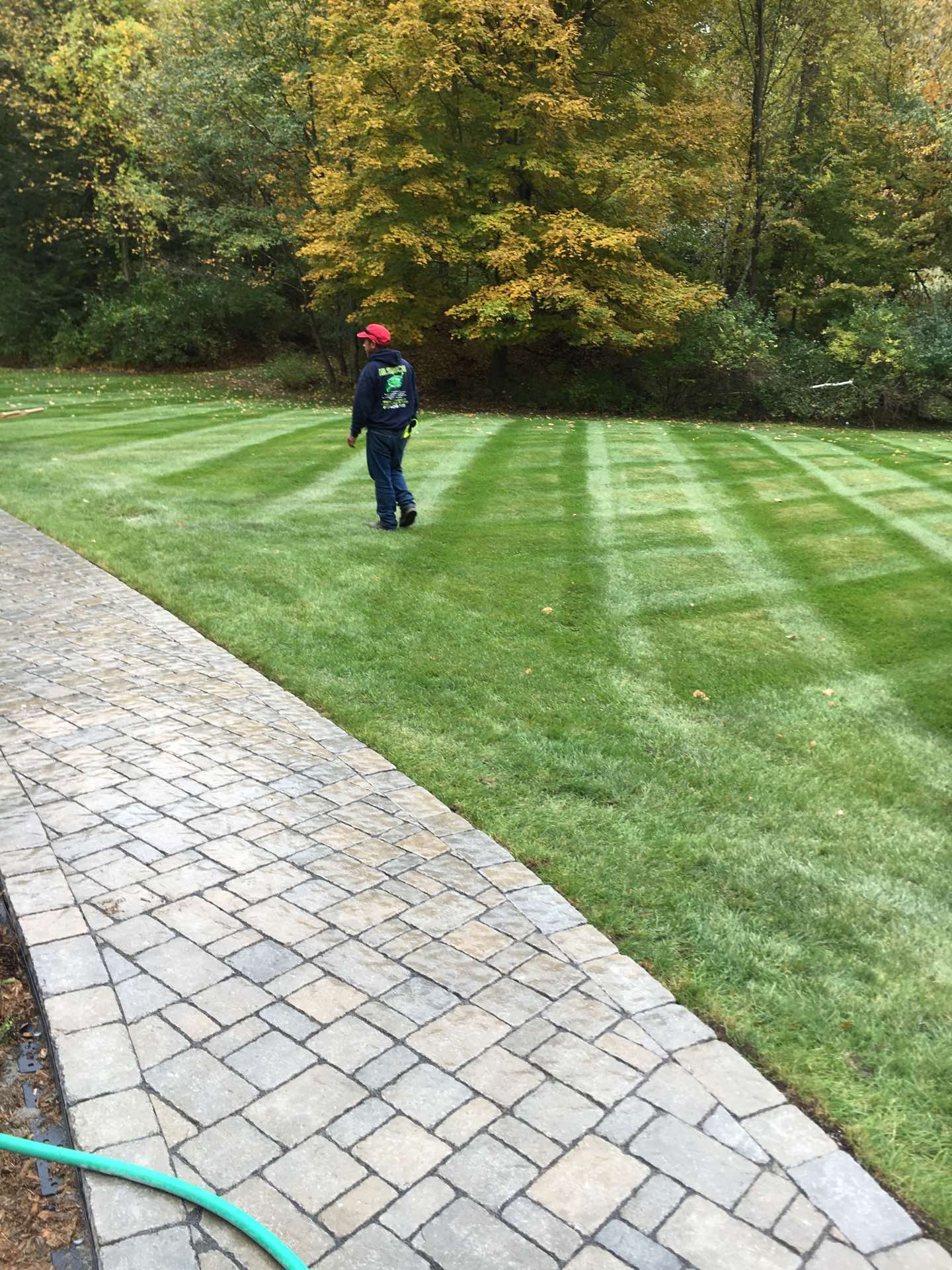 - All Season Landscaping & Tender - Martin Olivera - 8 Projects